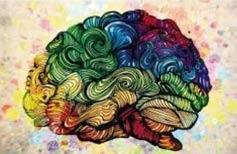 El cerebro de los niños: cuál es la edad propicia para el desarrollo intelectual
