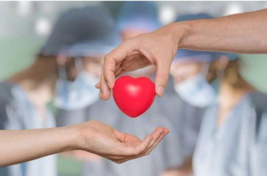 Sin donantes, no hay trasplantes: más de 7800 personas esperan un órgano en el país