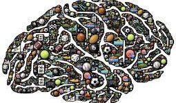 neurociencias_deporte